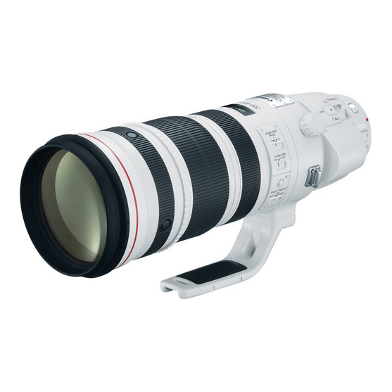 Canon EF 200-400mm f/4L IS USM 1.4x - 2