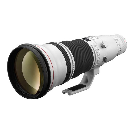 Canon EF 600mm f/4L IS II USM - 2